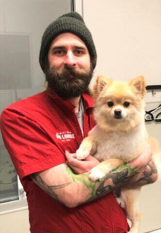Dog Groomer: Adam
