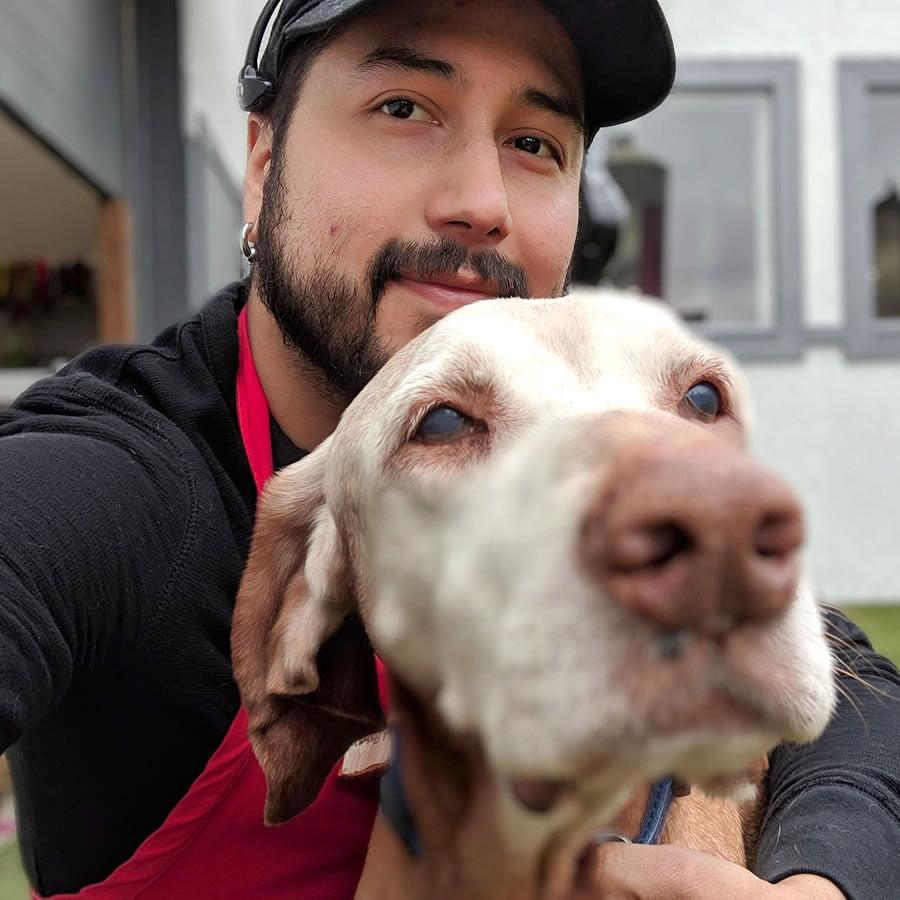 seattle dog handler at dog daycare