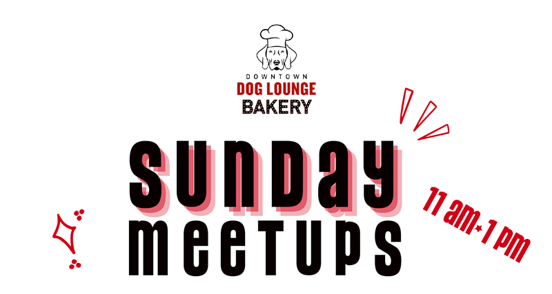 Sunday breed specific meetups for Seattle dogs