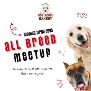 Fremont All Breeed Dog Meetup