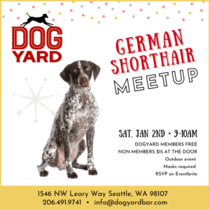 Seattle German Shorthair meetup