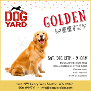 Seattle Golden Retriever Meetup in Ballard