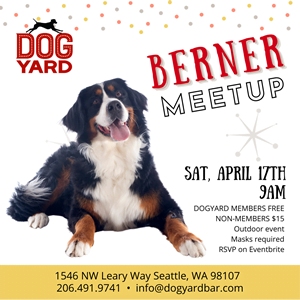 Seattle Berner Meetup in Ballard
