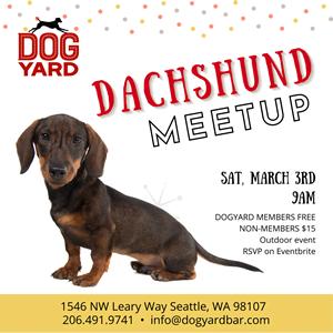 Dachshund meetup - calling all Seattle Weiner dogs!