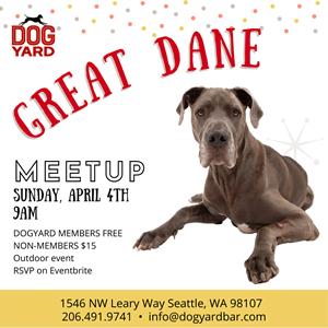 Seattle Great Dane Meetup in Ballard