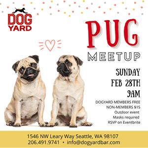 Seattle pug meetup in Ballard