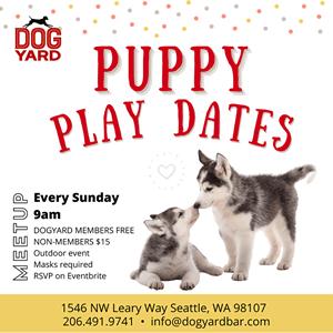 Puppy meetup in Ballard every Sunday