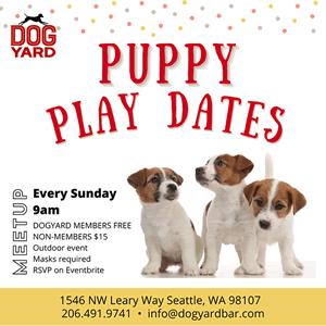 Puppy Meetup in Ballard