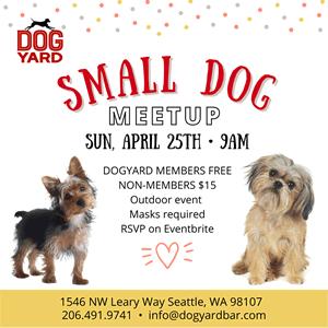 Small Dog Meetup in Ballard