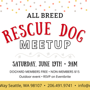 rescue dog meetup - all breeds welcome