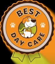 DDL voted Best Doggie Daycare in Washington!