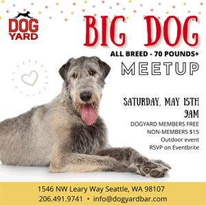 Seattle Big Dog Meetup in Ballard