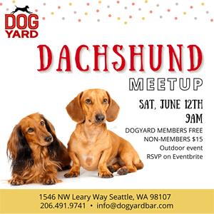 Seattle Doxie Meetup in Ballard