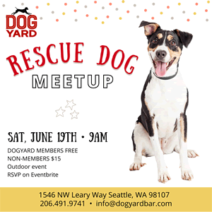Seattle Rescue dog meetup in Ballard