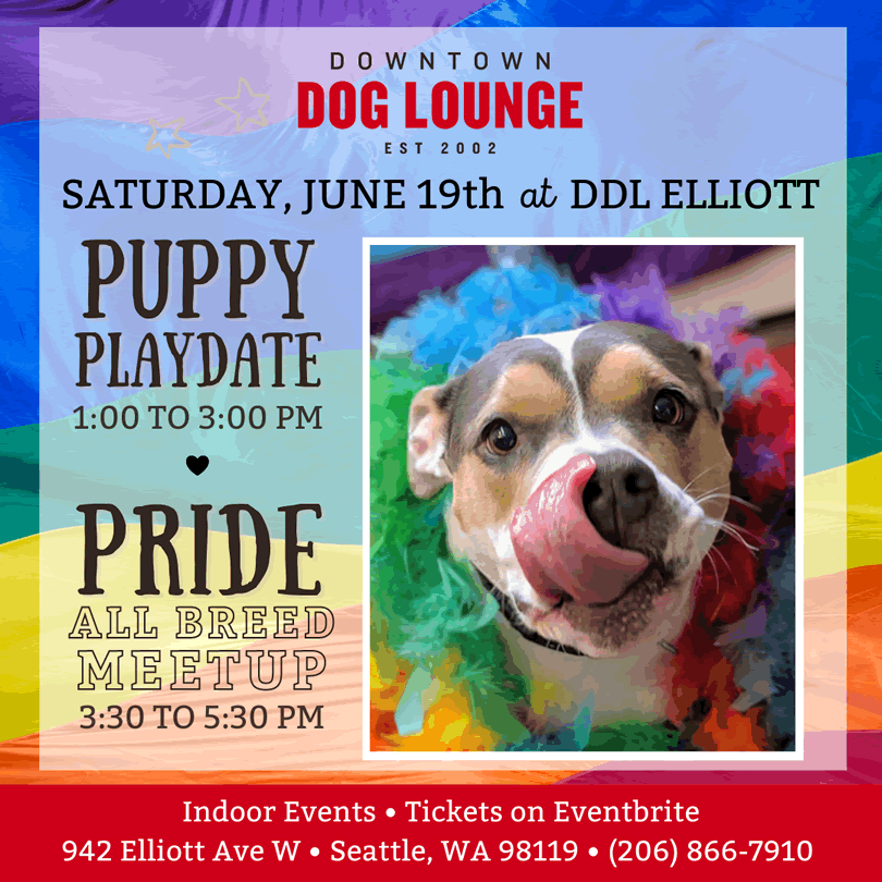 Pride meetup for puppers with LQBTQ+ parents