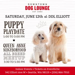 Seattle Queen Anne Neighborhood dog meetup