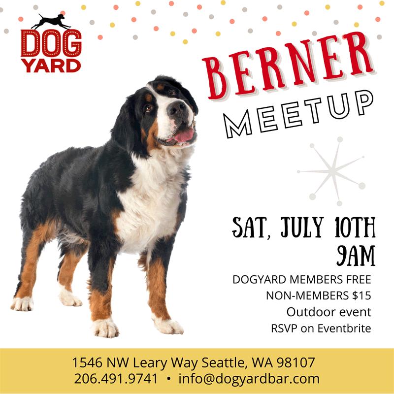 Mountain Dog meetup in Ballard