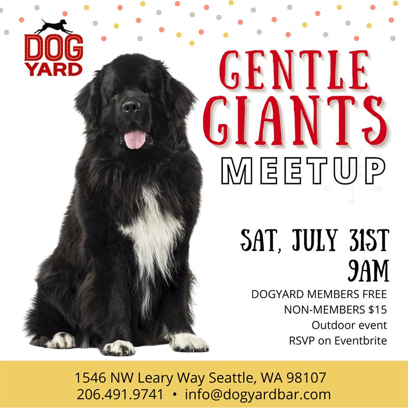 XL dog meetup in Ballard