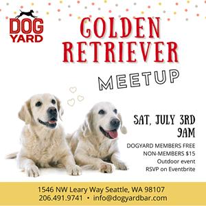 Golden Retirever meetup in Ballard