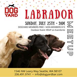 Seattle Labrador meetup