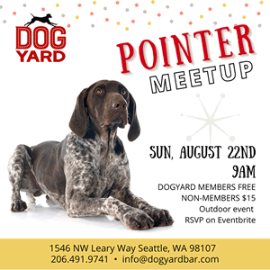 Seattle Pointer dog meetup