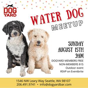 Water dog meetup in Ballard