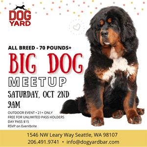 Seattle Big Dog Meetup - 75 Pounds +