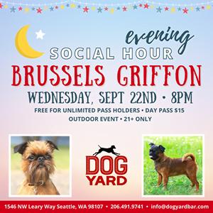 Brussells Griffon meetup in Ballard