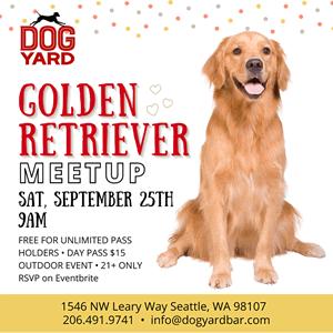 Golden Retriever meetup in Ballard