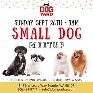 Seattle small dog meetup in Ballard