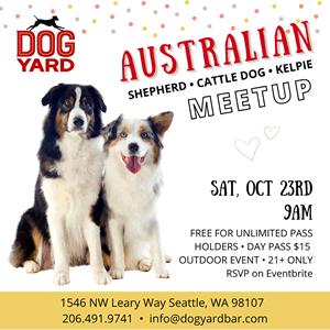 australian shepherd & cattle dog meetup in Ballard