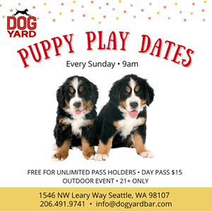 Ballard Puppy Play Date meetup