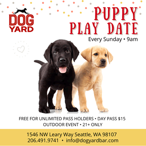 Seattle off leash puppy meetup