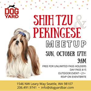 Seattle Shih Tzu & Pekingese meetup