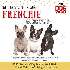 Seattle Frenchie meetup at the Dog Yard
