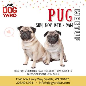 Pug meetup in Ballard
