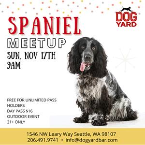 Seattle Spaniel meetup