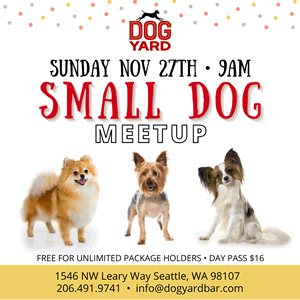 Seattle Small DOg Meetup at the Dog Yard